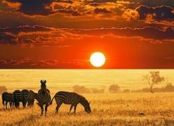 Почивка в Кения Цена от 2684 лв на човек